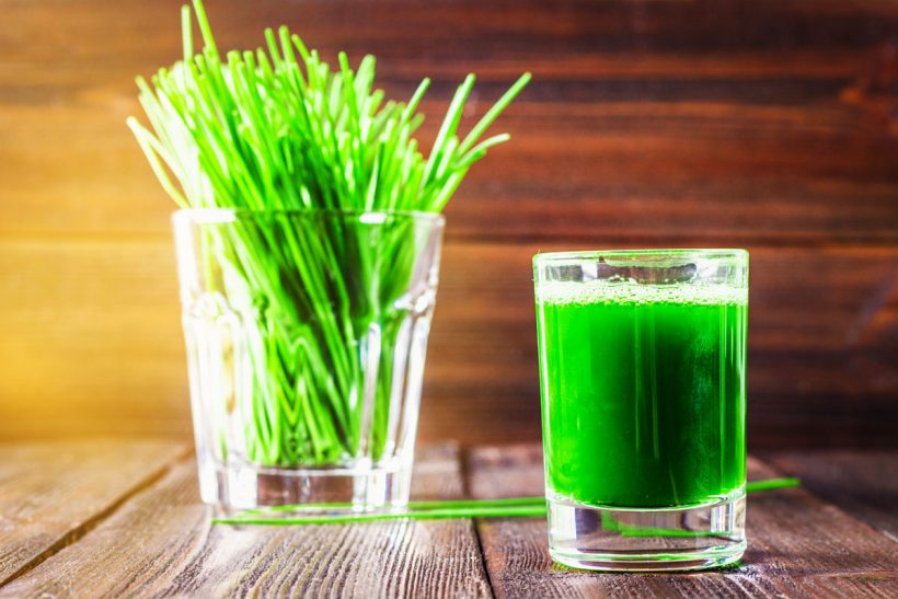 wheatgrass-juice-benefits